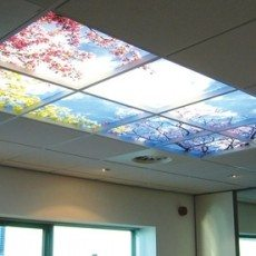 Rainbow Trees Light Fixture