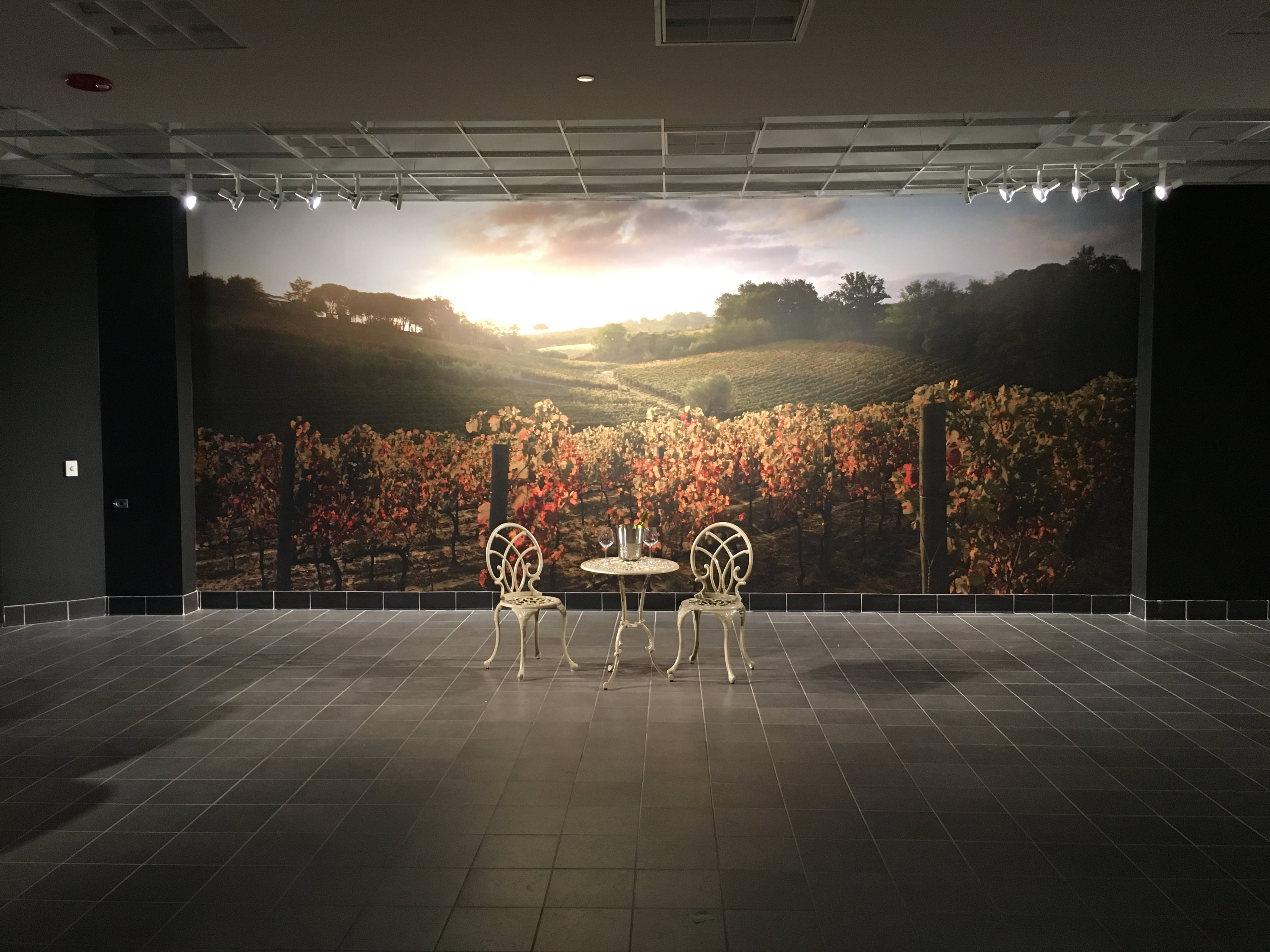 Seamless Matched Panel Graphics of Castellani's Vineyards in Tuscany